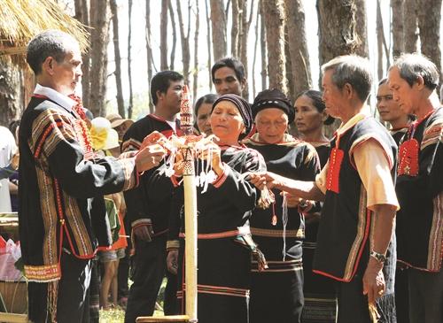 Kế hoạch tổ chức phục dựng nghi thức, nghi lễ của đồng bào dân tộc thiểu số các tỉnh Tây Nguyên gắn với diễn tấu Cồng chiêng
