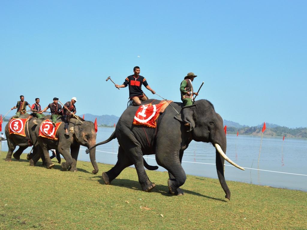 Đặc sắc Lễ hội đua voi và đua thuyền độc mộc trên hồ Lắk