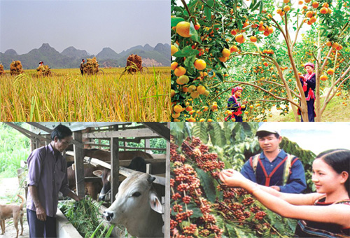 Xử lý Tờ trình số 29/TTr-SNN ngày 21/02/2017 của Sở Nông nghiệp và Phát triển Nông thôn