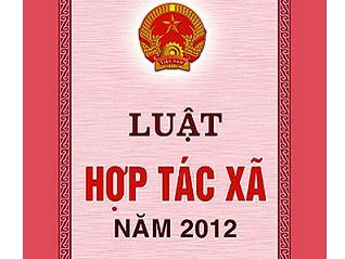 Triển khai kế hoạch sơ kết thi hành Luật Hợp tác xã năm 2012