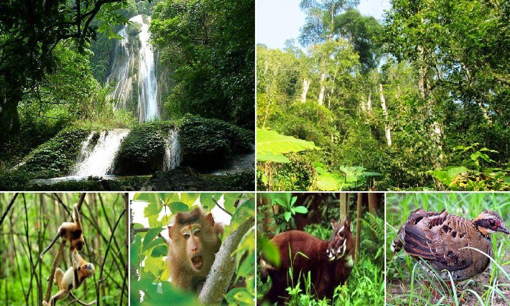 Kiểm tra hoạt động du lịch sinh thái tại Vườn quốc gia, khu bảo tồn thiên nhiên.