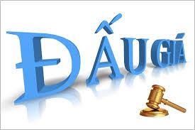 Ban hành Kế hoạch triển khai thi hành Luật Đấu giá tài sản và các văn bản hướng dẫn thi hành trên địa bàn tỉnh