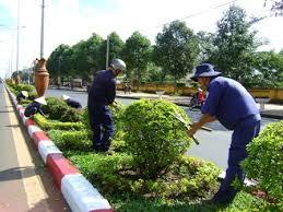 Phê duyệt quyết toán dự án hoàn thành công trình Chăm sóc cây xanh, hoa cây cảnh, thảm cỏ năm 2016 tại Khu Bảo tàng tỉnh và Khu Di tích Nhà đày Buôn Ma Thuột