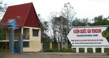 Chuyển giao Vườn quốc gia Yok Đôn về tỉnh Đắk Lắk quản lý