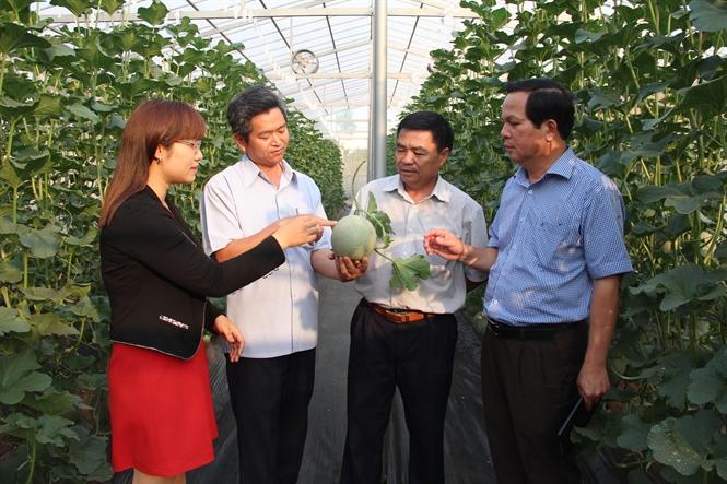 Phê duyệt đề cương, dự toán Đề án rà soát, điểu chỉnh, bổ sung Đề án phát triển nông nghiệp ứng dụng công nghệ cao tỉnh Đắk Lắk đến năm 2020