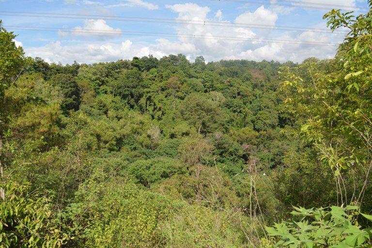 Điều chỉnh quy hoạch sử dụng đất đến năm 2020 và Kế hoạch sử dụng đất kỳ cuối (2016 - 2020) của tỉnh Đắk Lắk.