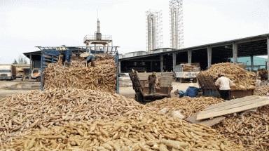 Bổ sung dự án Nhà máy chế biến tinh bột sắn tại huyện Krông Bông vào Quy hoạch tổng thể phát triển công nghiệp tỉnh Đắk Lắk