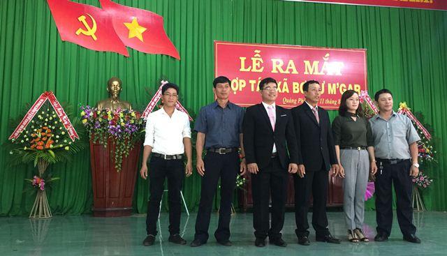 Huyện Cư M'gar: Ra mắt Hợp tác xã bơ Cư M'gar