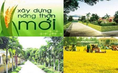 Tập trung triển khai, thực hiện Chương trình MTQG xây dựng nông thôn mới giai đoạn 2016-2020.