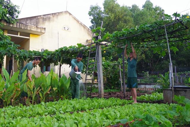 Mô hình Vườn ao chuồng tại Đồn Biên phòng Ia Rvê