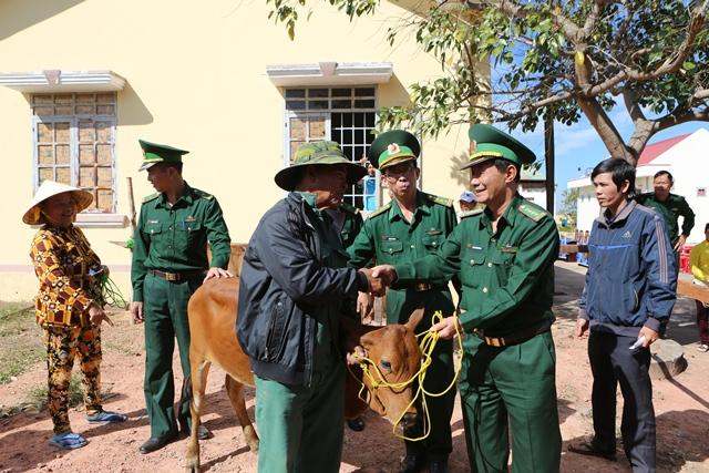Trao tặng bò giống cho các hộ nghèo khu vực biên giới tỉnh Đắk Lắk