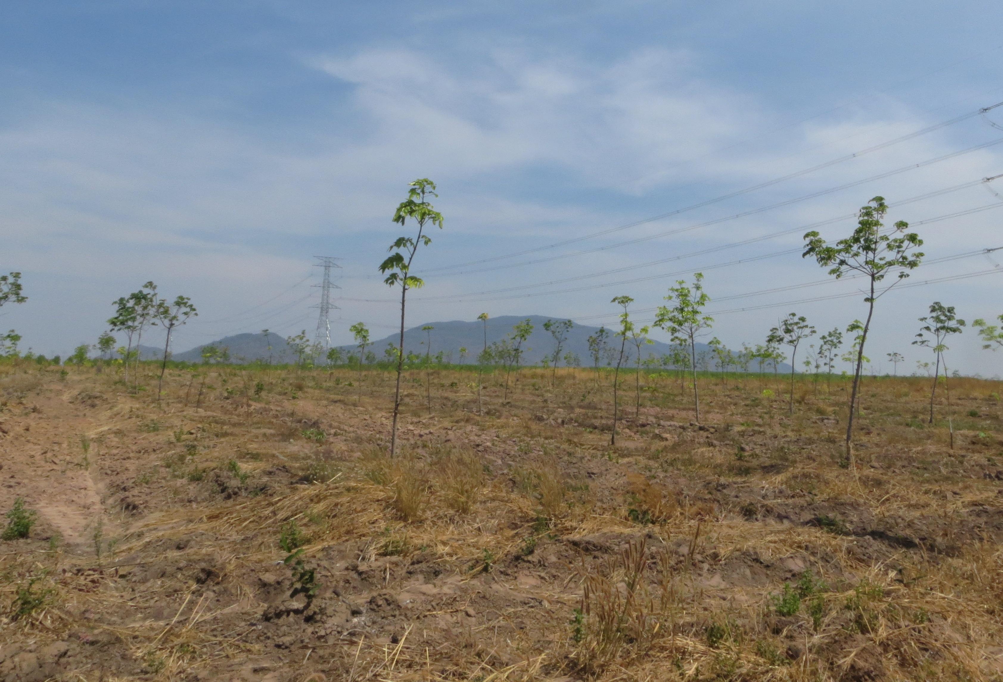 Phê duyệt Kế hoạch sử dụng đất năm 2018 tại huyện Ea Súp.